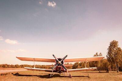 Cuadro Viejo avión Avión