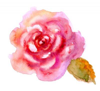 Cuadro Vintage acuarela rosa roja brillante