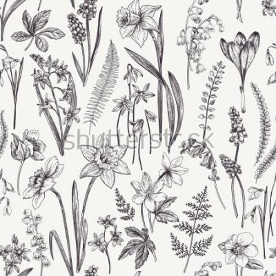 Cuadro Vintage patrón floral sin fisuras. Flores y hierbas de primavera. Ilustración botánica Narciso, lirio del valle, eléboro, gota de nieve, azafrán. Grabado. En blanco y negro.