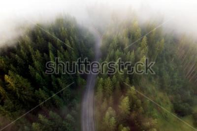 Cuadro Vista de verano de la carretera de montaña.