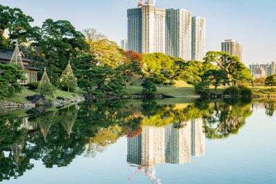 Cuadro Vista del paisaje urbano de tokio con el parque