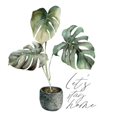 Cuadro Watercolor Lets stay home card with monstera. Isolation during an epidemic. Hand painted exotic plant with pot isolated on white background. Floral illustration for design, print or background.