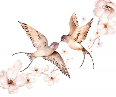 Cuadro Watercolor spring flying swallows isolated and blossom flowers on white background
