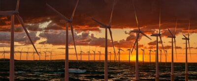 Wind farm in the sea during sunset