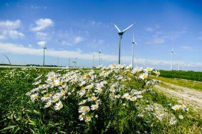 wind turbines in field, in Sweden Scandinavia North Europe