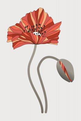Cuadro бутон  и цветок мака с необычными лепестками