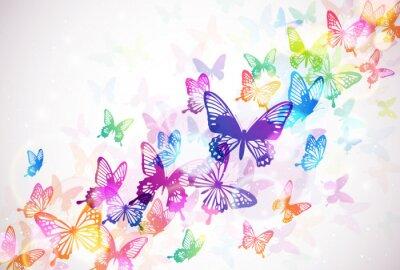 Cuadro 蝶 々