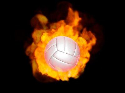 Cuadro 炎のバレーボール