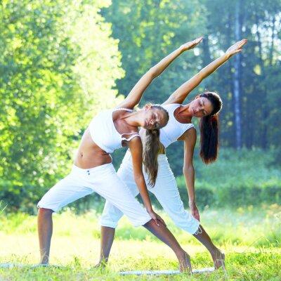 Cuadro yoga