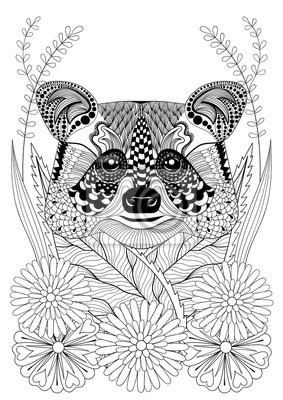 Zentangle Estilizada Cabeza De Mapache En Las Flores Mano Dibujado