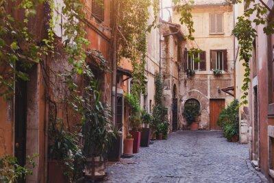Fotomural Acogedora calle en Roma, Italia