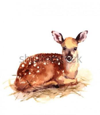 Fotomural Acuarela bebé ciervo pintado a mano ilustración cervatillo aislado sobre fondo blanco