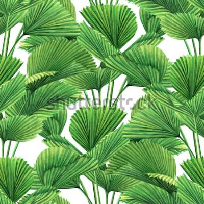 Fotomural Acuarela, coco, hoja de palma, hojas verdes de fondo sin patrón.Ilustración dibujada a mano de acuarela estampados de hojas exóticas tropicales para papel tapiz, textil estilo Hawaii aloha jungle styl