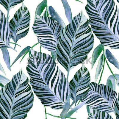 Fotomural Acuarela de patrones sin fisuras con hojas tropicales: palmeras, monstera, maracuyá. Hermoso estampado con plantas exóticas dibujadas a mano. Traje de baño de diseño botánico.