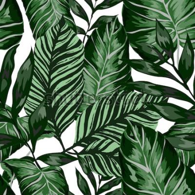 Fotomural Acuarela de patrones sin fisuras con hojas tropicales: palmeras, monstera, maracuyá. Hermoso estampado con plantas exóticas dibujadas a mano. Traje de baño de diseño botánico. Vector.