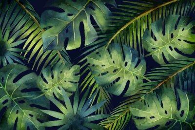 Fotomural Acuarela vector banner tropical hojas y ramas aisladas sobre fondo oscuro.