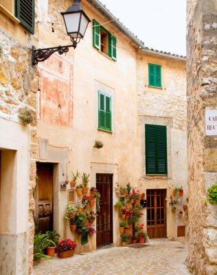 Fotomural Aldea medieval Mallorca tradicional Valldemosa