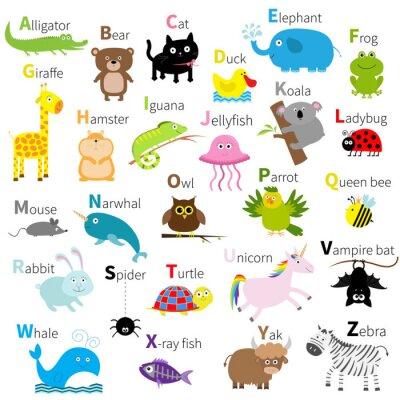 Fotomural Alfabeto animal del parque zoológico. Cute conjunto de caracteres de dibujos animados. Aislado. Diseño blanco. Educación de niños bebés. Cocodrilo, oso, gato, pato, elefante, rana, jirafa, hámster, ig