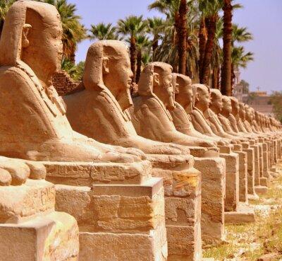 Fotomural Amón templo de Luxor