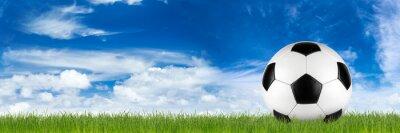 Fotomural Ancho retro balón de fútbol en la hierba banner en frente de azul cielo nublado