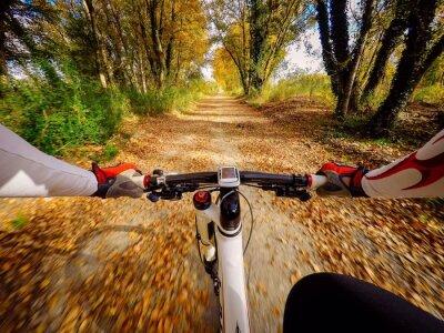 Fotomural Andando en bicicletta en autunno en campagna. Pov originalmpoin de vista
