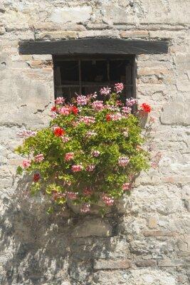 Fotomural Antigua casa en Las Marcas (Italia)
