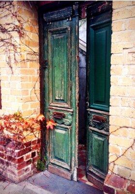 Fotomural antigua puerta abierta