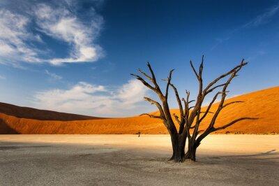 Fotomural Árbol muerto en Sossusvlei, en el desierto de Namib, Namibia