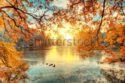 Fotomural Árboles coloreados hermosos con el lago en otoño, fotografía de paisaje. Finales de otoño y principios de invierno. Al aire libre y naturaleza.
