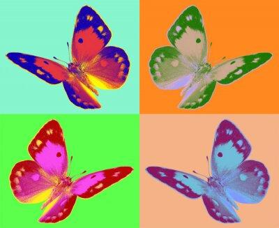 Fotomural arte pop Colias mariposa