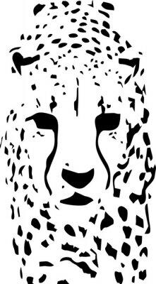 Fotomural Arte pop del tigre blanco y negro