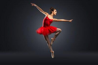 Fotomural Bailarina De Ballet