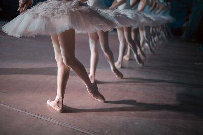 Fotomural Bailarines en el tutú blanco sincronizado baile