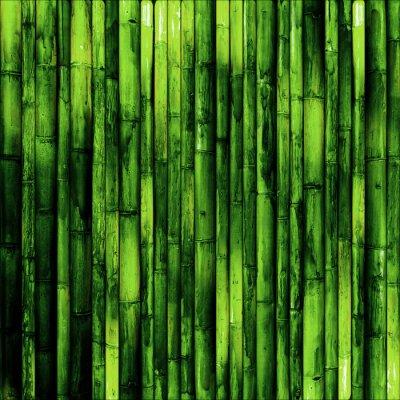 Fotomural Bamboo wall