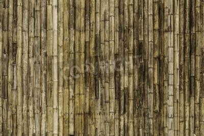 Fotomural Bambú cerca de antecedentes