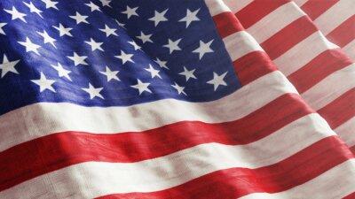 Fotomural Bandera americana