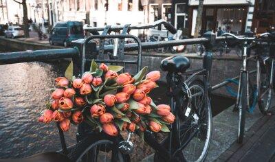 Fotomural Bicicleta con tulipanes