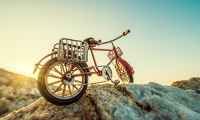 Fotomural Bicicleta de juguete retro por el mar