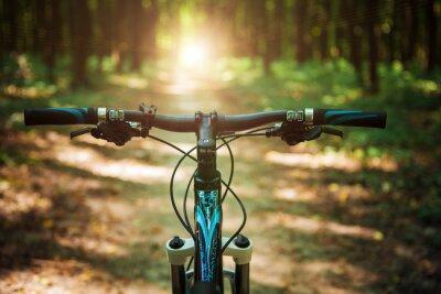 Fotomural Bicicleta de montaña bajando colina bajando rápido en bicicleta. Visto desde