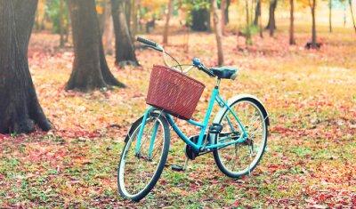 Fotomural Bicicleta para viajes de ocio. (Foco en la cesta) en tono retro de la vendimia