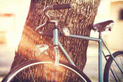 Fotomural Bicicleta vieja apoyada contra un árbol