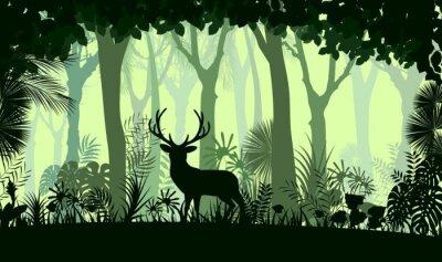 Fotomural Bosque de fondo con venado salvaje de los árboles