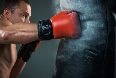Fotomural Boxeador joven del boxeo