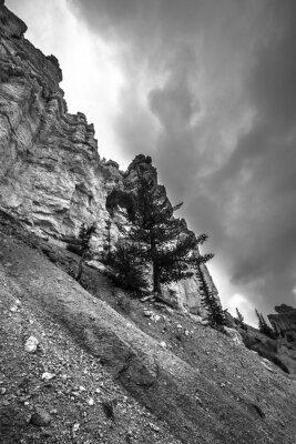 Fotomural Bryce Canyon Negro Fotografía en blanco y