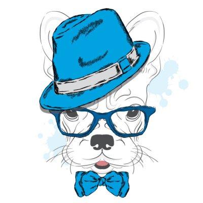 Fotomural Bulldog francés vector. Perrito de la historieta. Un perro en un sombrero y gafas de sol. Lindo cachorro. Hipster Chico. Perro pedigrí.