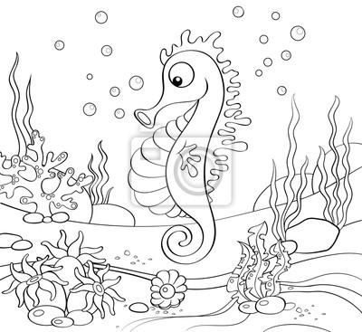 Caballo de mar. mundo submarino. ilustración en blanco y negro ...