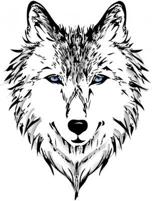 Fotomural Cabeza del lobo