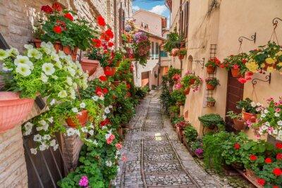 Fotomural Calle en la pequeña ciudad en Italia en día soleado, Umbría