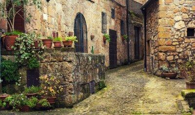 Fotomural Calle estrecha de la antigua ciudad medieval de tuff Sorano con plantas verdes y adoquines, viajes de fondo de Italia