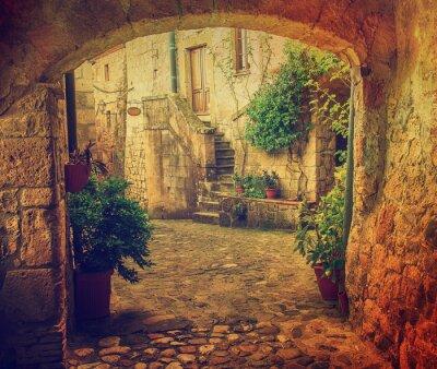 Fotomural Calle estrecha de la ciudad de tuff medieval Sorano con arco, plantas verdes y adoquines, viajar Italia antecedentes de la vendimia